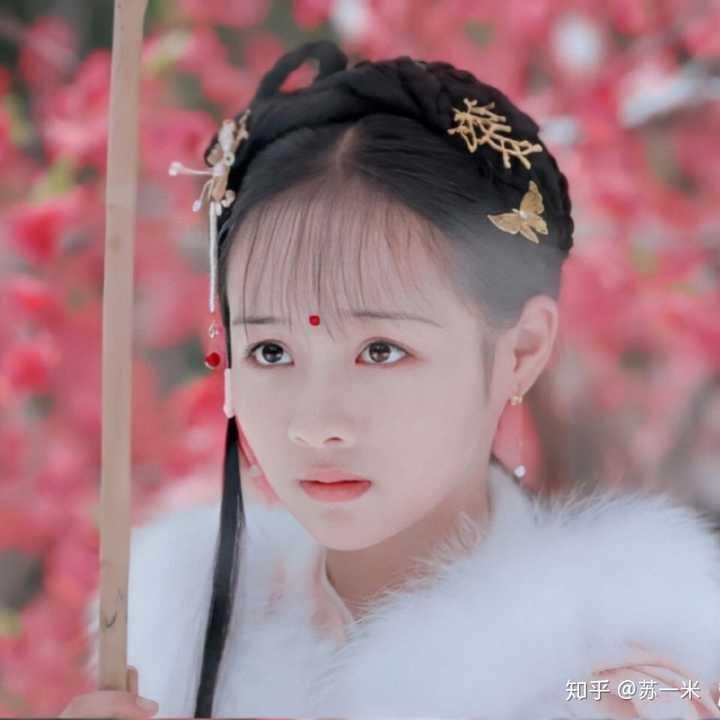 天真派:红楼梦之桃花诗社