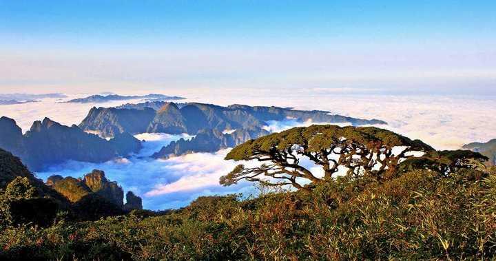 1为莲花山风景区,2为银杉公园,3为圣堂湖生态旅游景区,5为圣堂山景区