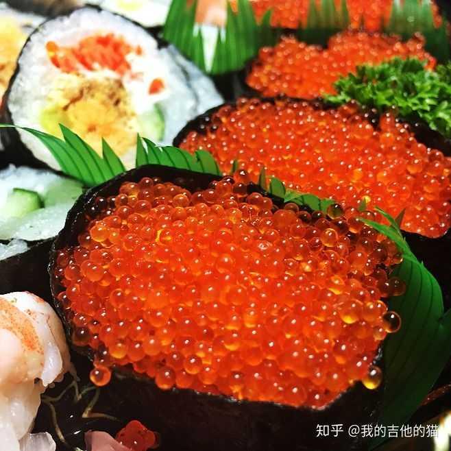 我之前吃过一个鱼籽寿司(图片都是网上的)因为在制作人面前难吃也大鳄龟乱动不睡还冬眠图片