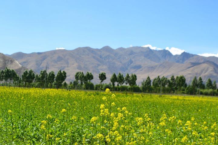 西藏山南好玩吗?