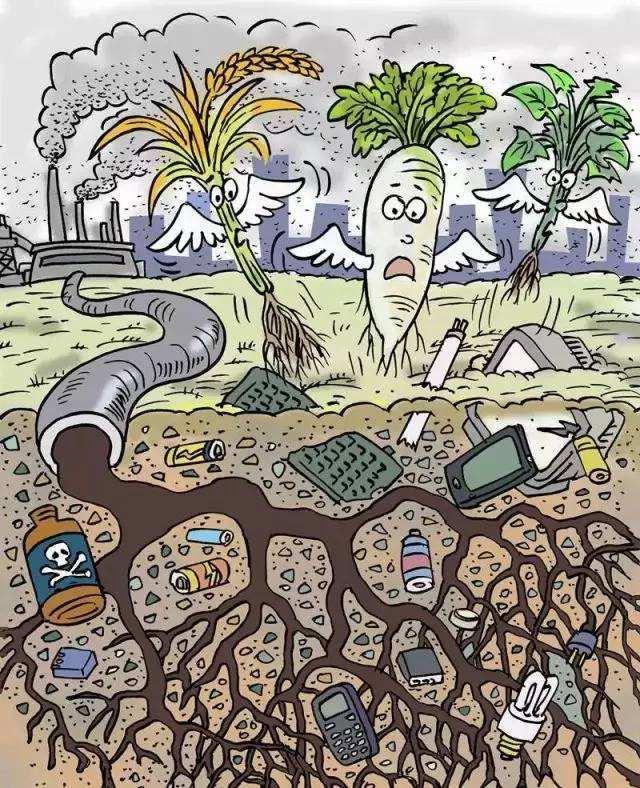 中国发展迅速对应的污染问题也是日益严重,环境污染带来了一系列的