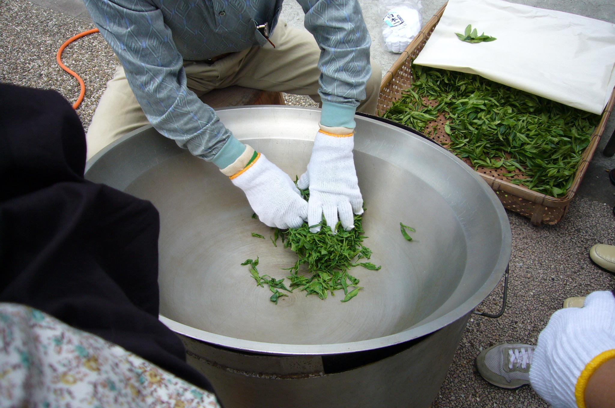 Ферментация кипрея. Приготовление иван-чая (копорский) 42