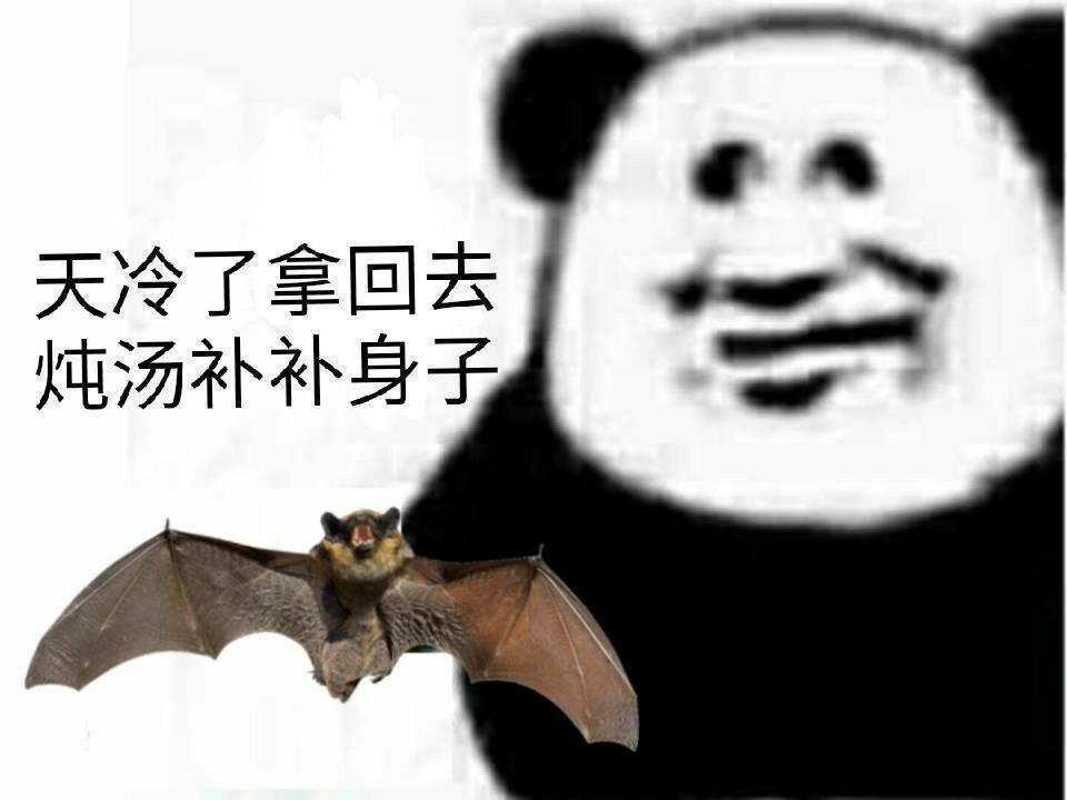 蝙蝠表情包图片