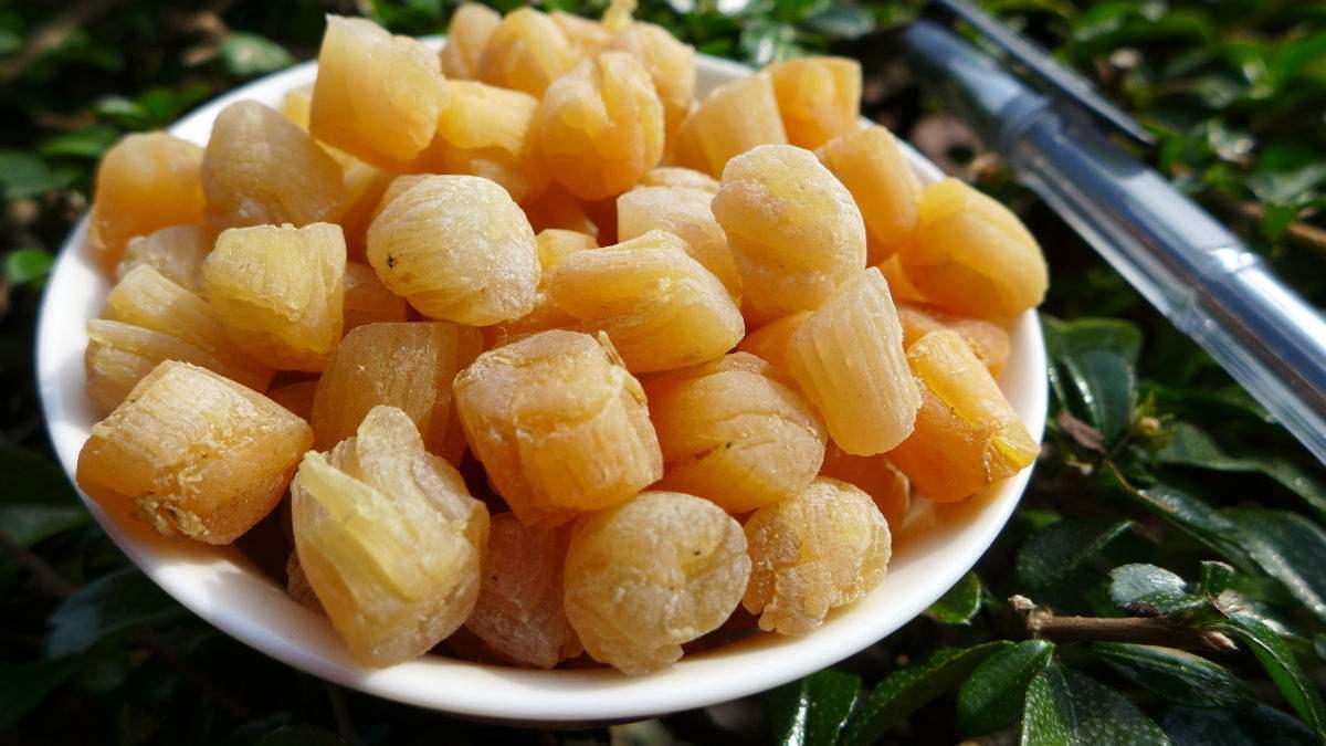 天赐的海参酸菜v海参可以营养品海洋1581103菜不老调理淹顶级吗图片