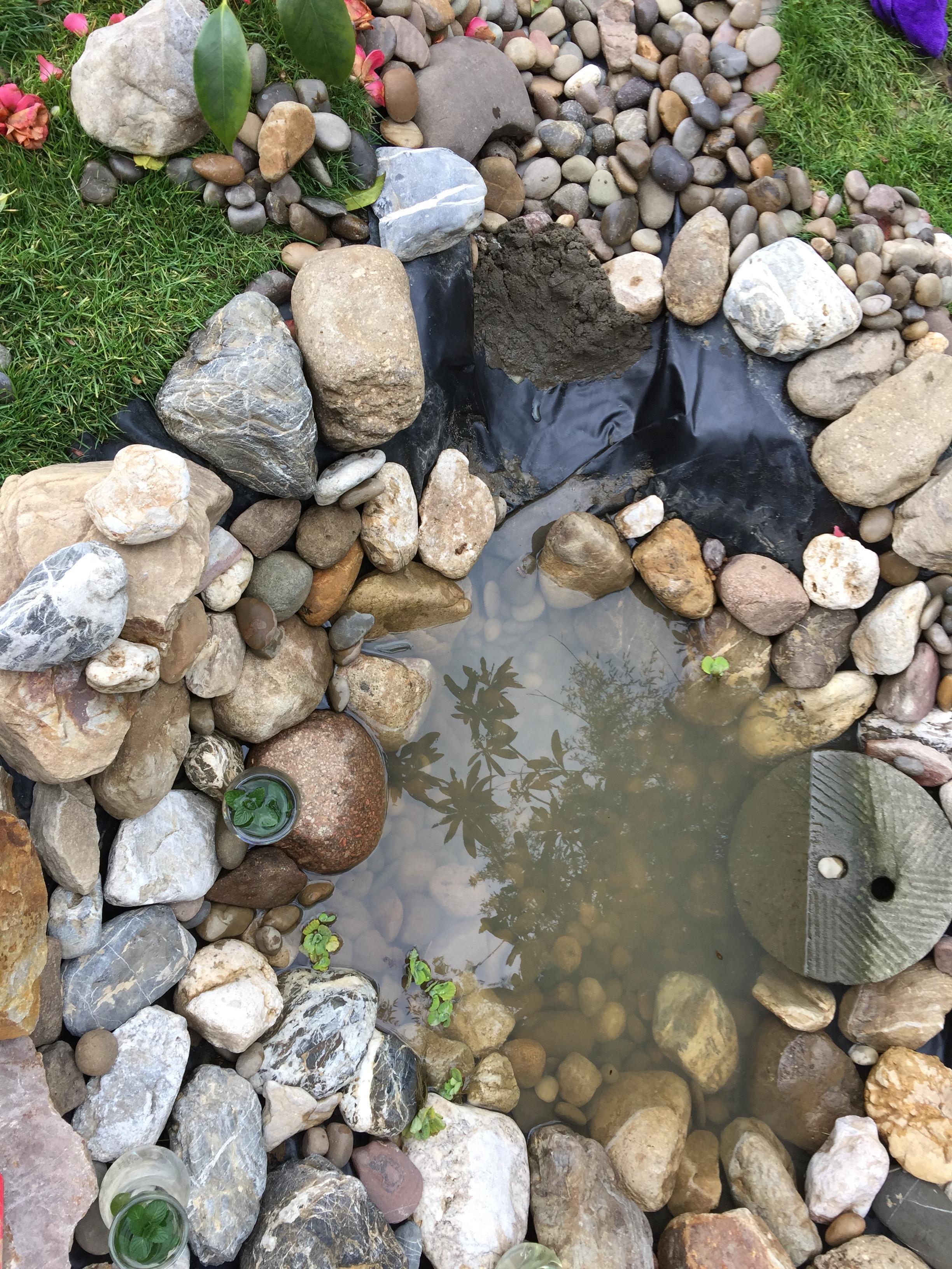 当春乃发生——池塘细节改进系列(一) - 知乎专栏图片