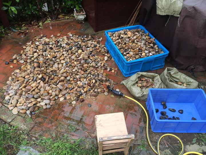 庭院建造池塘的造景过程【转自weibo:@马锐拉】插图(19)