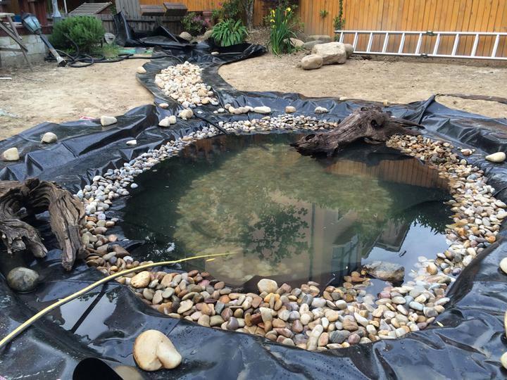 庭院建造池塘的造景过程【转自weibo:@马锐拉】插图(26)