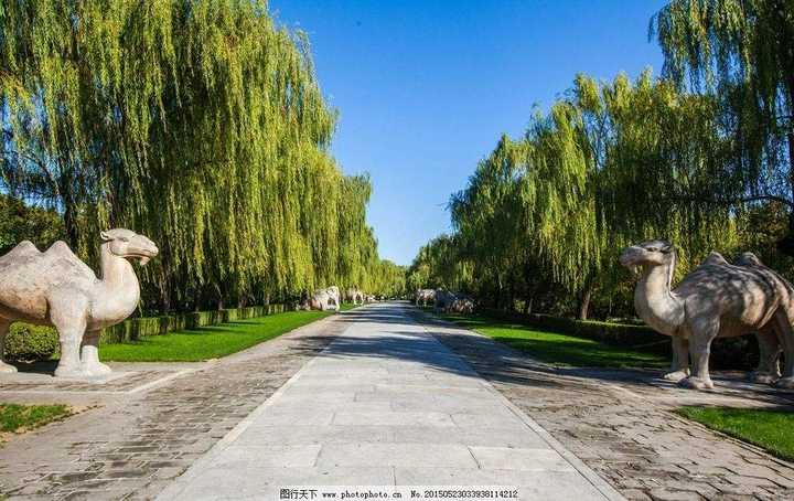 【北京游记】明十三陵之神道——莫倚危栏频北望,十三陵树几曾青
