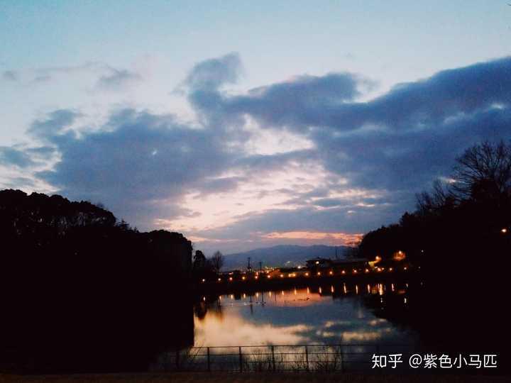 2020 入学 式 大阪 大学