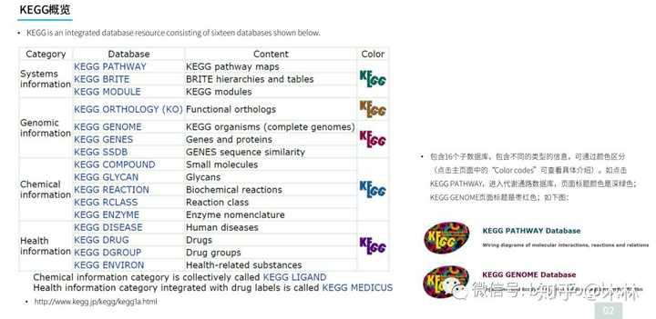生物信息学数据库使用教程(三): KEGG数据库使用及通路分析