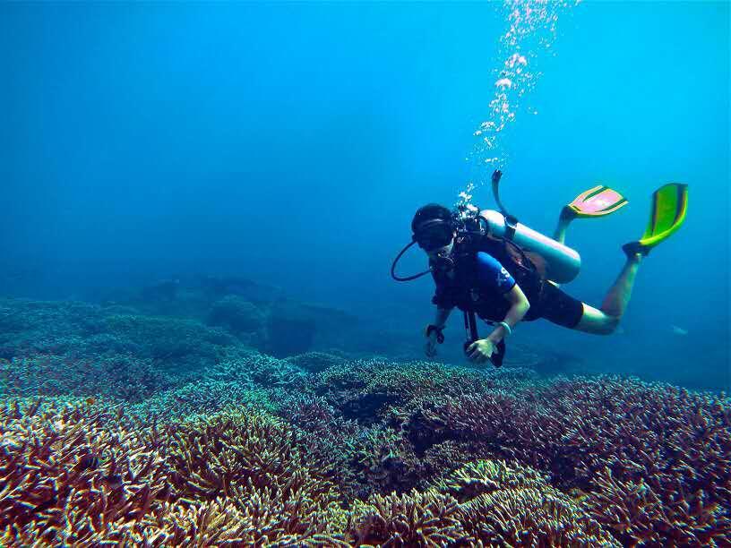 骆仪的 Live -- 潜入深蓝:如何安全地享受大海的美?
