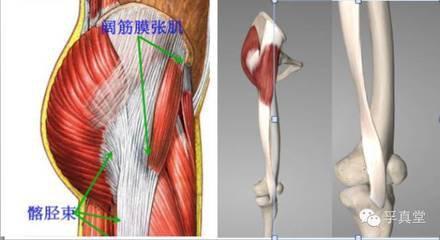 小腿拉伸_髌骨软化的正确处理方式 - 知乎