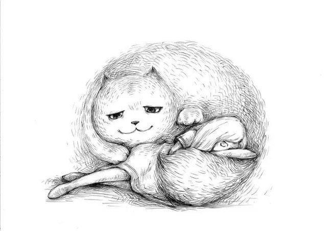 宠物 离世/有时候也会假装高冷不理你,但却在你睡着的时候给你一个拥抱。