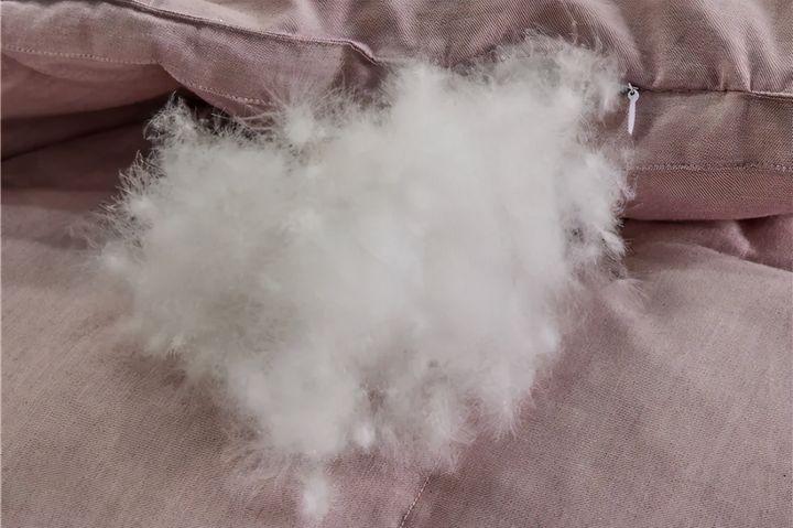 羊毛被和蚕丝被哪个好(羊毛被、蚕丝被你分得清吗)插图(2)