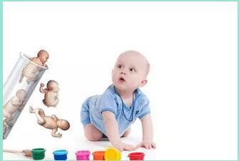 谢娜试管婴儿在哪里做的(谢娜怀孕二胎是试管婴儿吗)