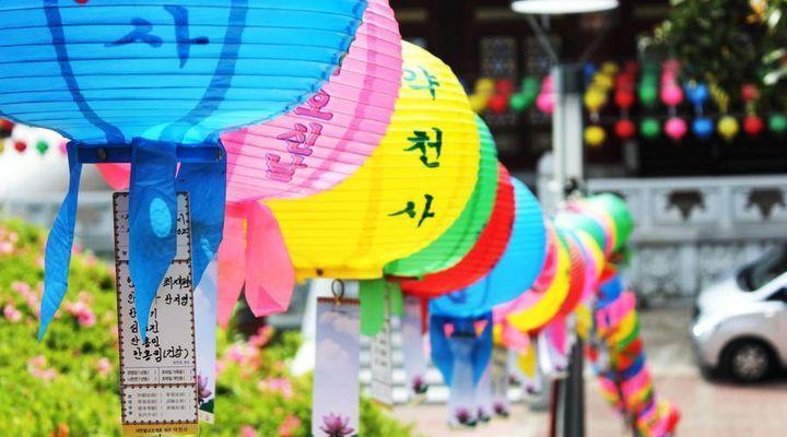 济州岛为什么不属于中国(济州岛真的是撒狗粮的最佳旅游目的地吗)
