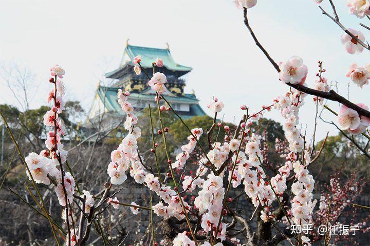 梅林 大阪 城