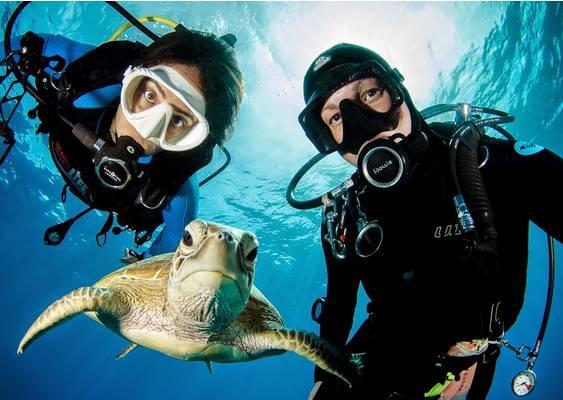初学潜水常见的五个问题
