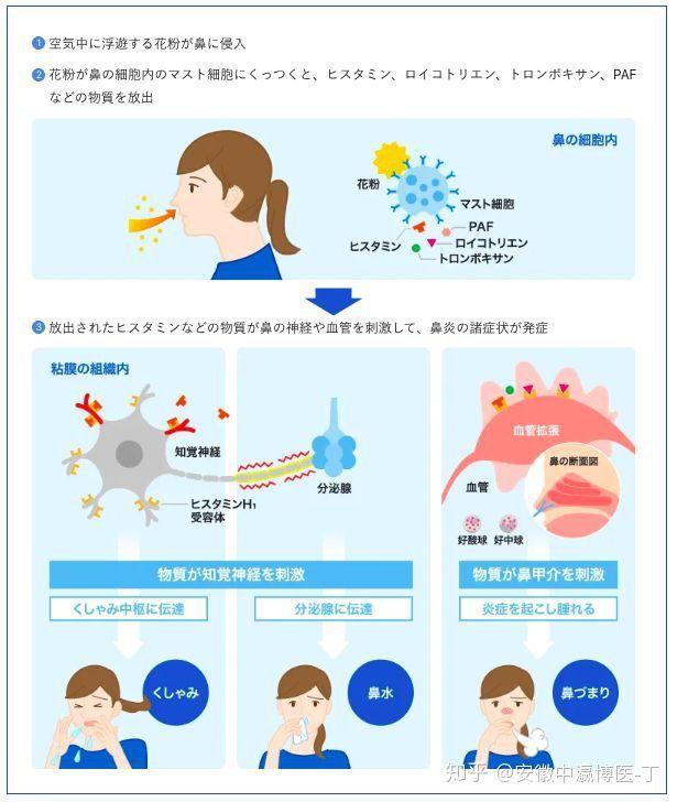 症 喉 花粉