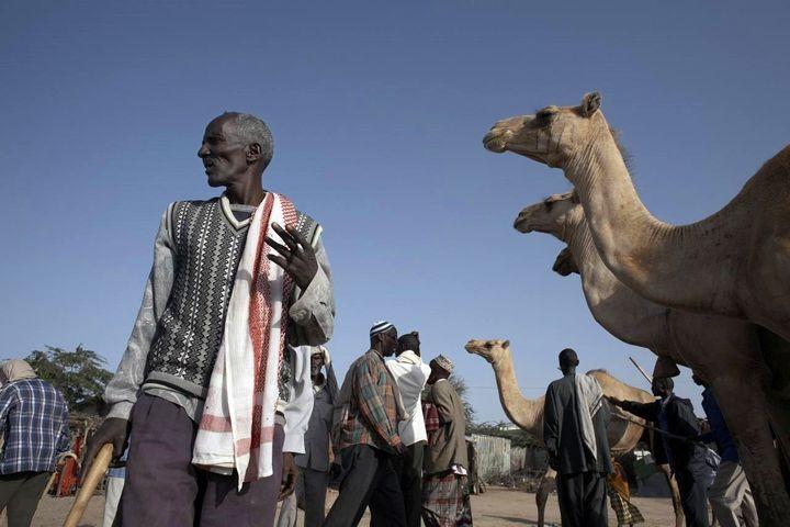 非洲国家有哪些国家(非洲真的很穷吗)