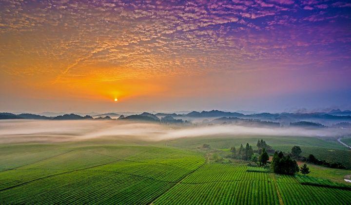 贵州特产有哪些土特产(贵州有什么旅游项目吗)