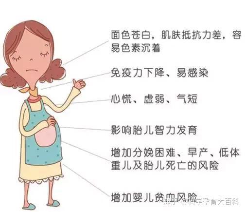 妊娠 後期 貧血