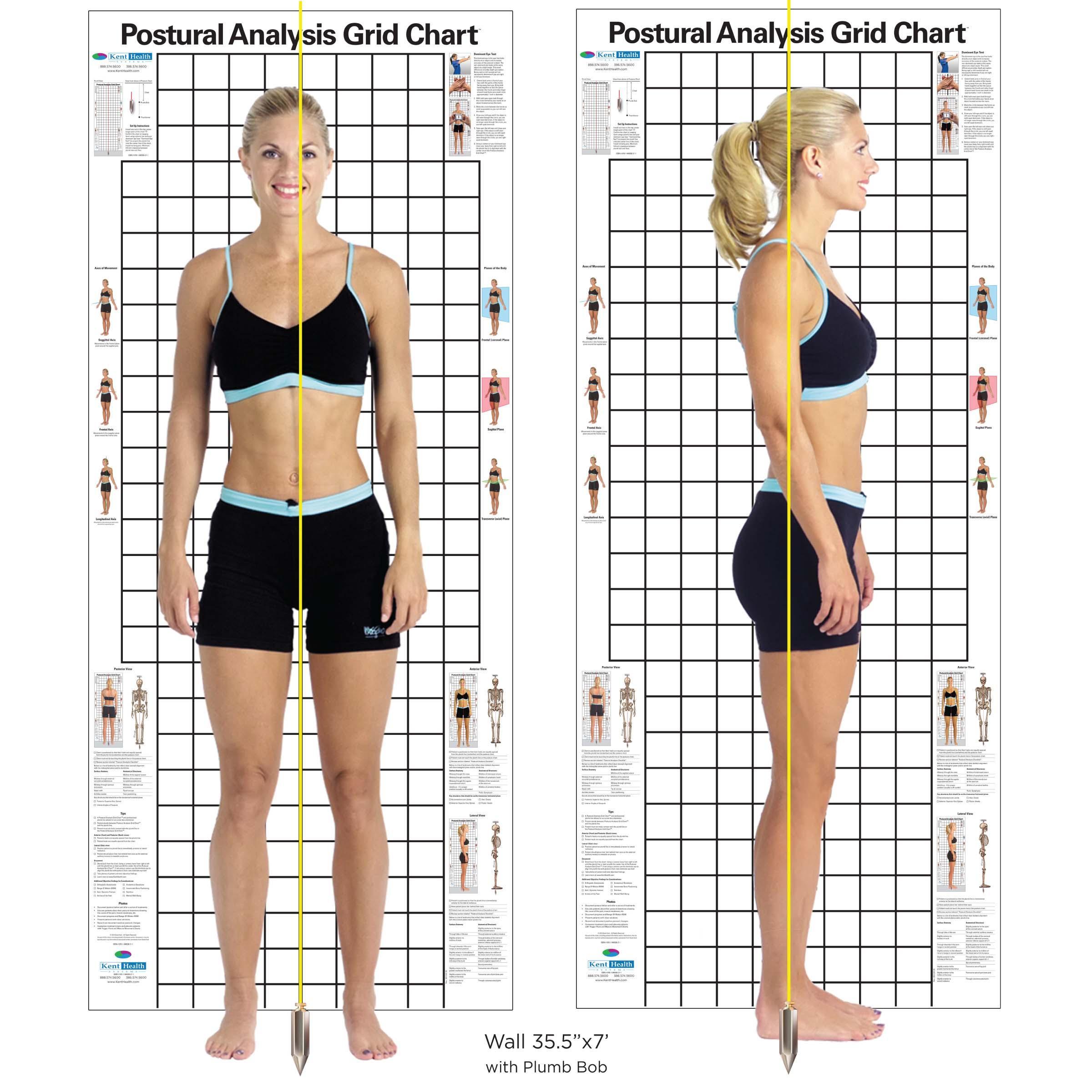 如何锻炼改善骨盆前倾?