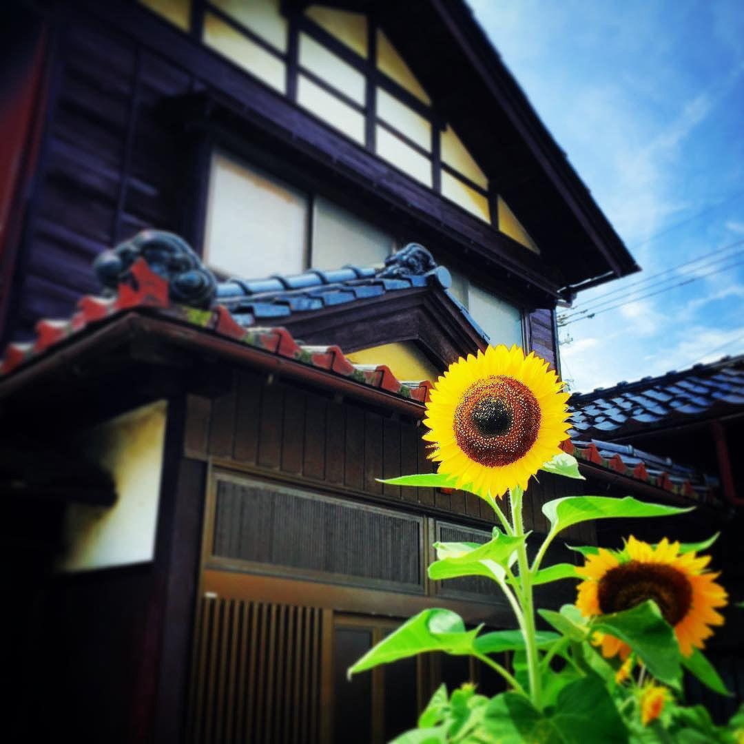 你最喜欢的日本城市是哪个? - 知乎用户的回答