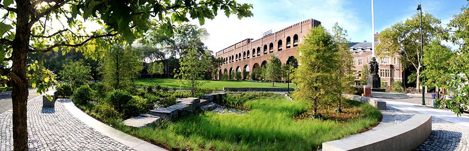 生态景观设计「雨水花园」在城市环境中的应用? - 知乎