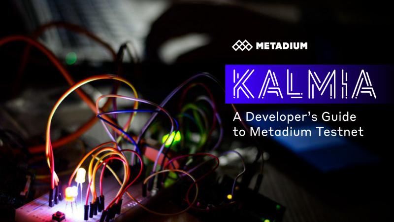 Metadium 测试网(Kalmia)开发者指南