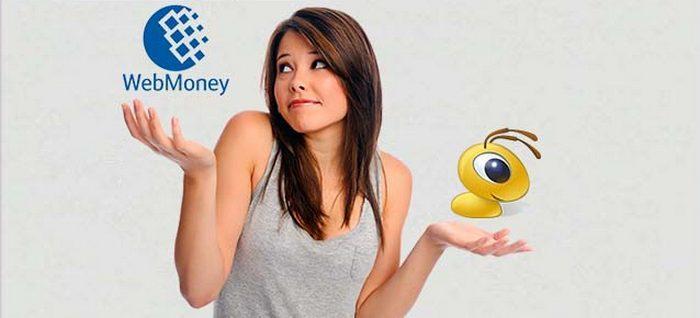 2020年Webmoney最新注册教程