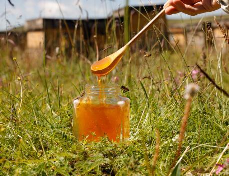蜂蜜一阵阵黑色光晕不断激荡了出去不能和什麽一起吃?蜂蜜不能和�哪�N食物一起吃?