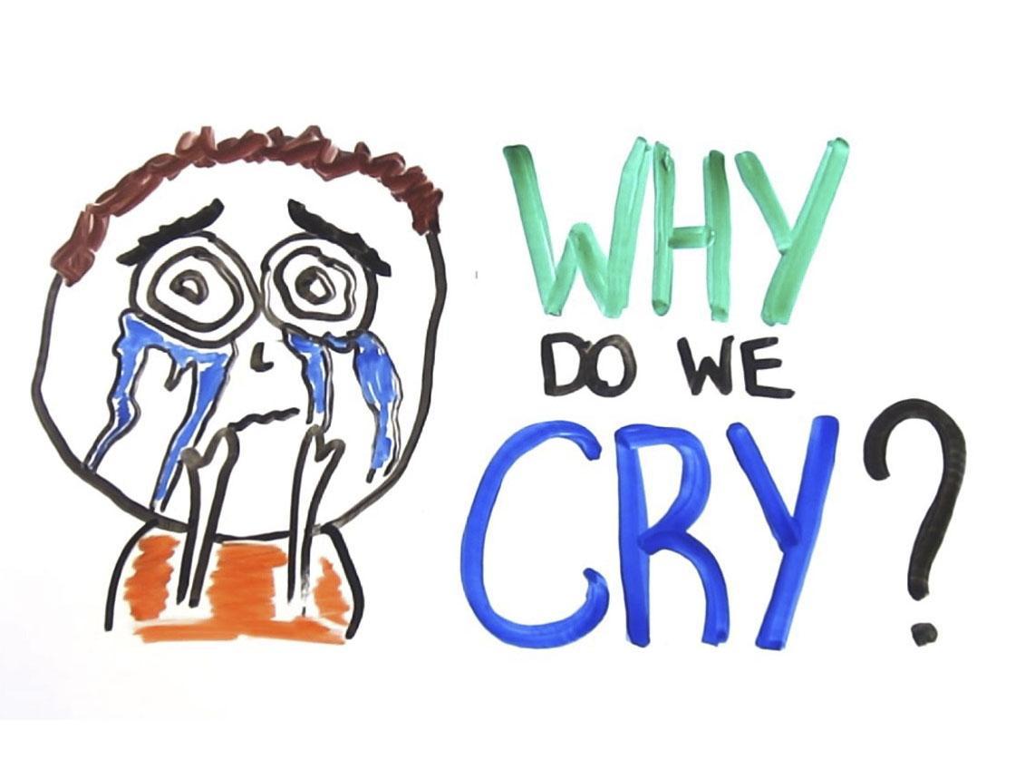是因为忧伤而哭泣,还是因为哭泣而忧伤?