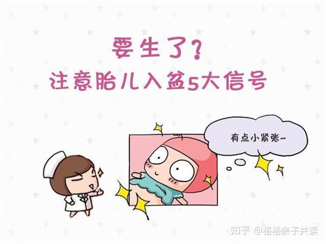 怎么摸胎儿是否入盆_医生是怎么判断胎儿入盆的? - 知乎
