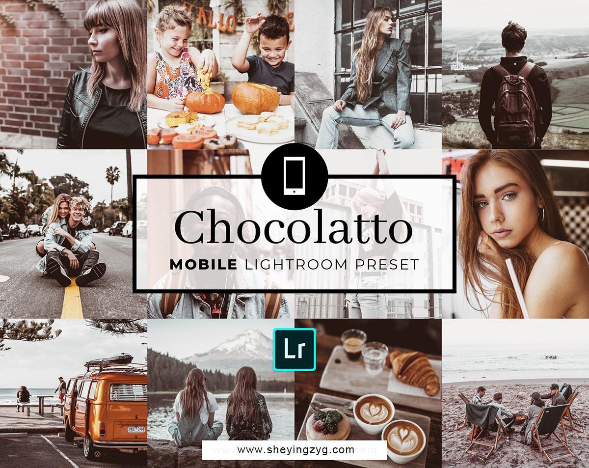 【S571】Instagram网红博客VSCO胶片风复古胶片旅行Lightroom预设包Chocolatto 含移动手机版lr预设