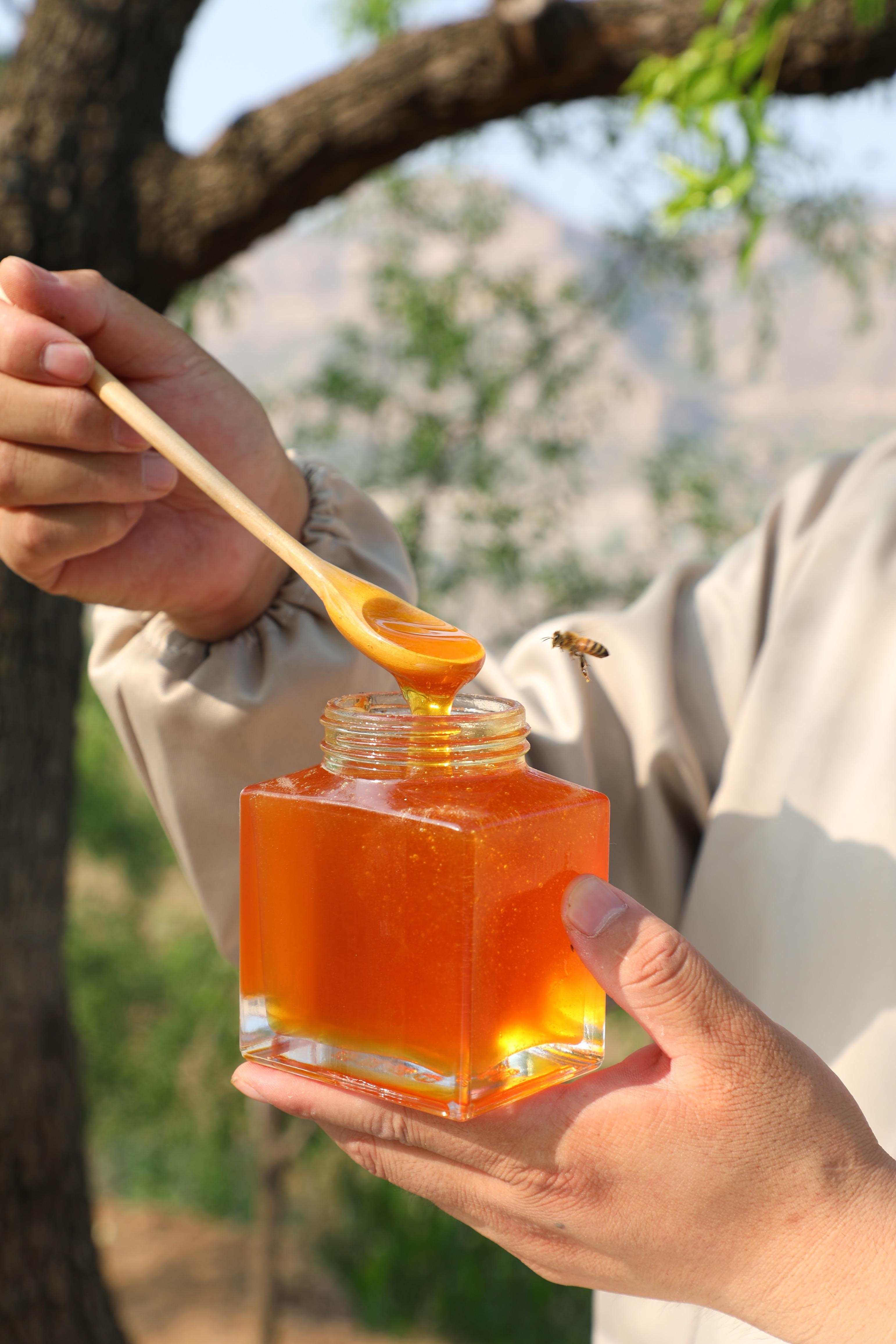 纯枣花蜜的味道? Jujube Nectar的味道和颜色是什么?