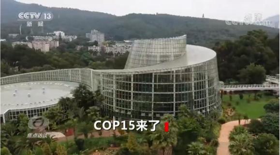 登上CCTV焦点访谈?这个重建后的扶荔宫不一般!
