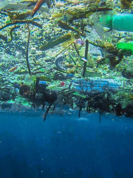 塑料在未来会变成什么?人们又能做点什么呢?