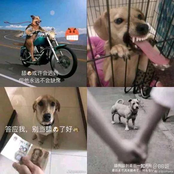 """保持好的心态_做""""舔狗""""是一种怎样的心态? - 知乎"""