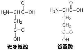 谷氨酸的结构_氨基酸,嘌呤,嘧啶结构式的记忆,来呀!背呀! - 知乎