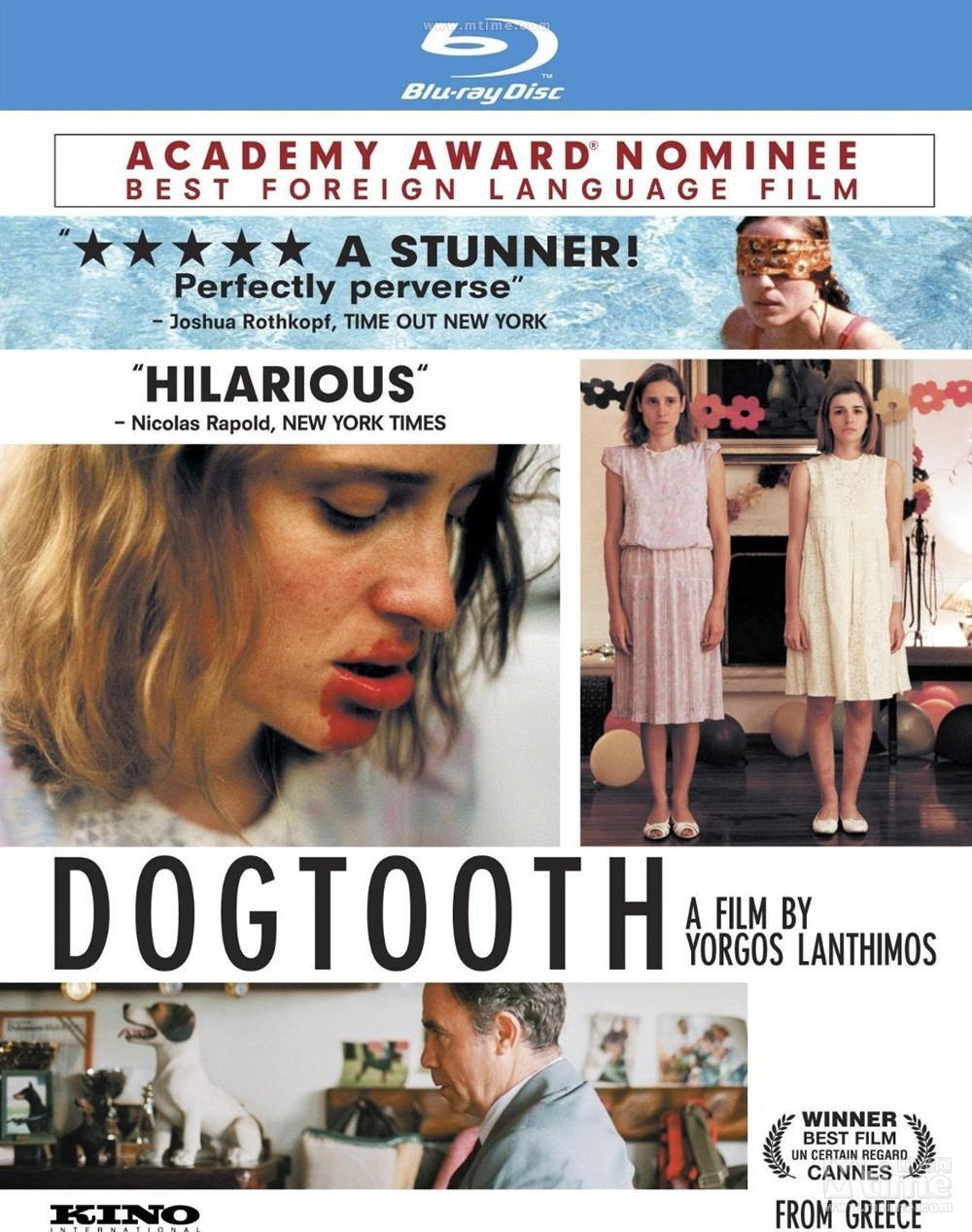 《狗牙》一部关于美育的电影