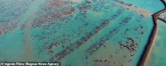 亚特兰蒂斯大陆文明_失落古文明亚特兰蒂斯终于找到了?西班牙发现12000年前疑似废墟 ...