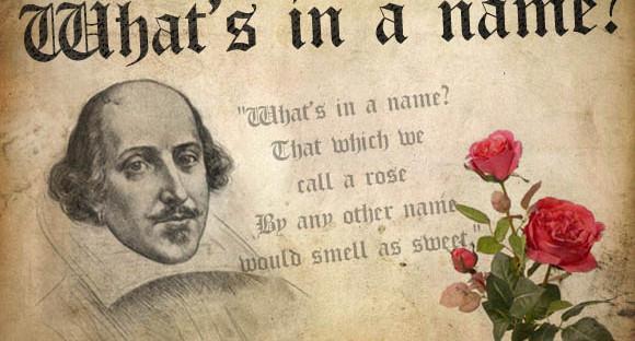 名字有什么关系呢?玫瑰不叫玫瑰,依然芳香如故:深度学习花书前言(下)