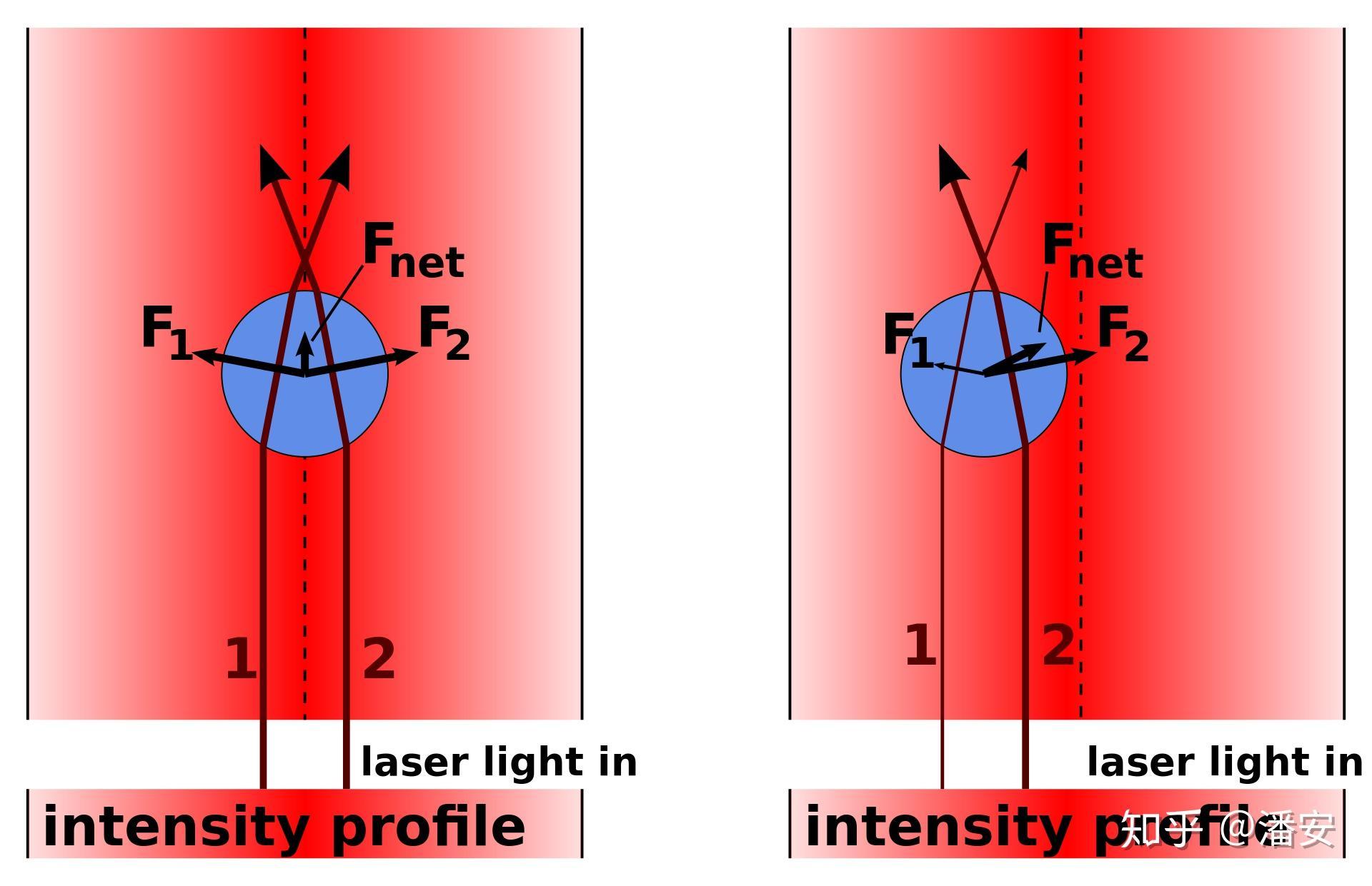 光镊的原理_梯度力光阱原理
