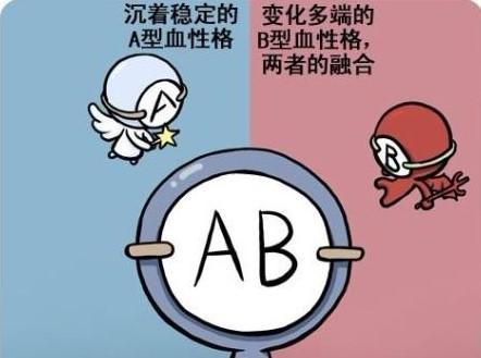 O 型 型 ab