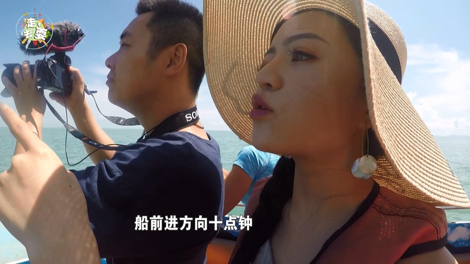 假期去哪儿旅行 泰国苏梅岛实拍,出海寻找粉色海豚