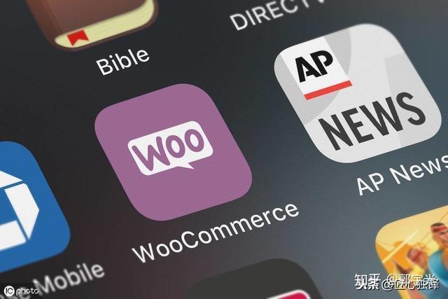 企业网站源码如何变现_拼客中国网站源码 大型地方拼客网源码 (https://www.oilcn.net.cn/) 网站运营 第7张