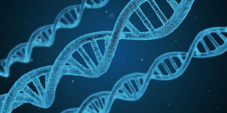 【高中生物5】怎样学好高中生物遗传?