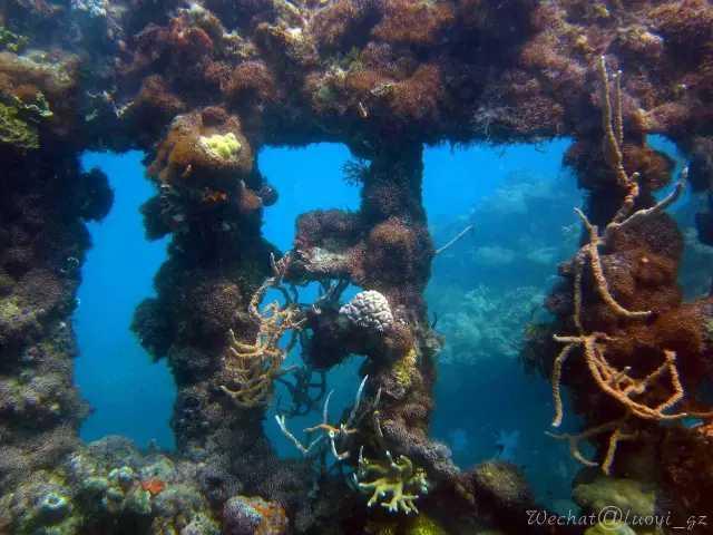 下潜30米,回到71年前的太平洋战场