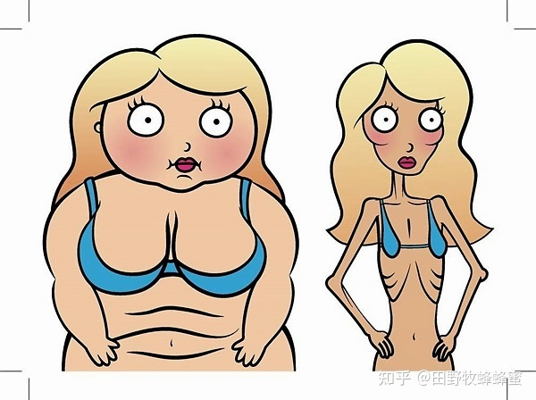 会喝蜂蜜水不会胖吗?会喝蜂蜜减肥或脂肪吗?